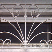 FG02719 Fenstergitter Totale